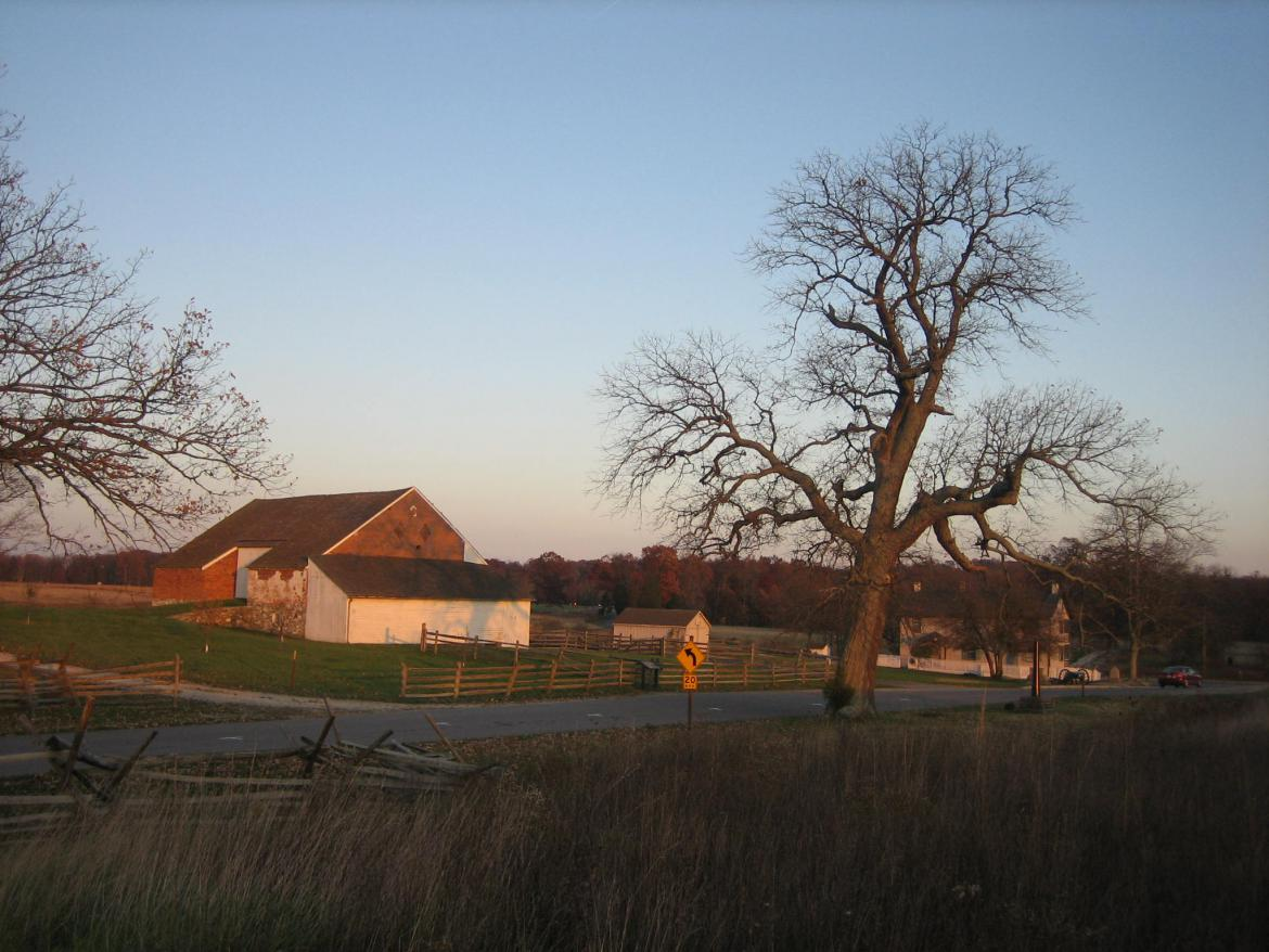 Witness tree and Trostle Barn