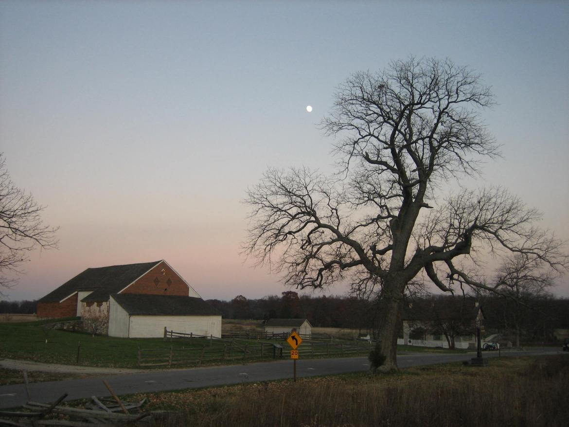 Far way view of Trostle Barn and Sickles Witness Tree