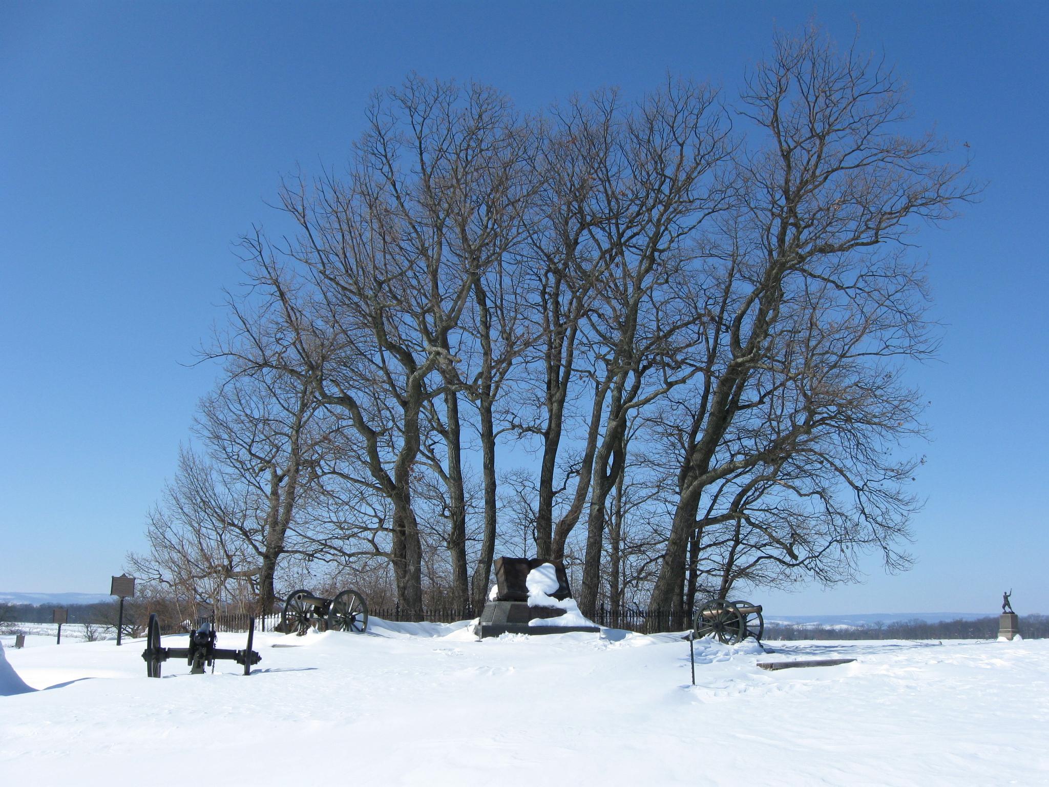 Snow In Rhode Island