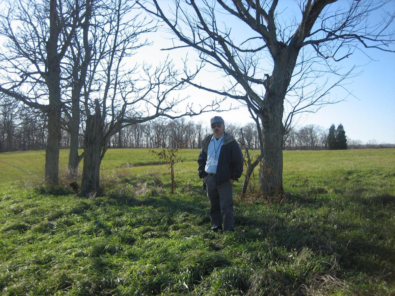Trees on the McPherson farm